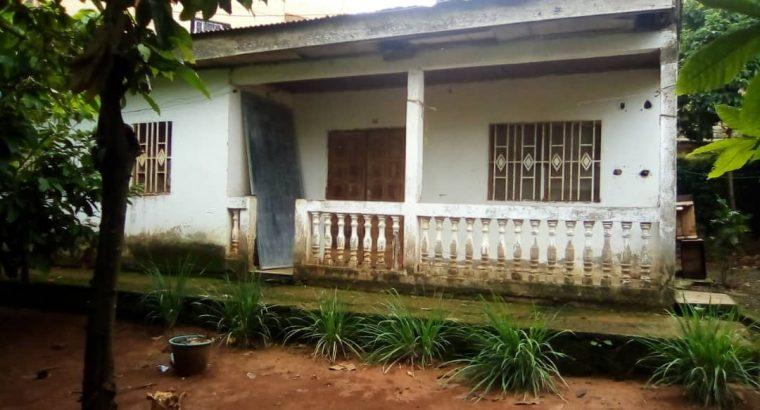 Y054ECTM04 OFFRE : MAISON À VENDRE CAMEROUN-YAOUN