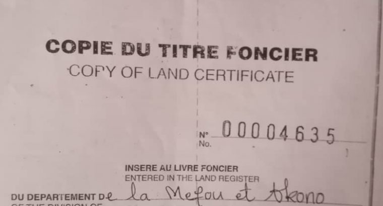 Y037MMT06 TERRAIN A VENDRE AU CAMEROUN /
