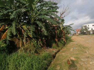 Y094MMT01 OFFRE : TERRAIN A VENDRE AU CAMEROUN/YA